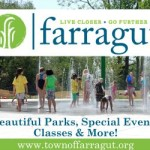 Town of Farragut 2015 .jpg