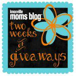 The Back Porch Mercantile, Two Blooms, and Jewelry in Candles {Giveaway}