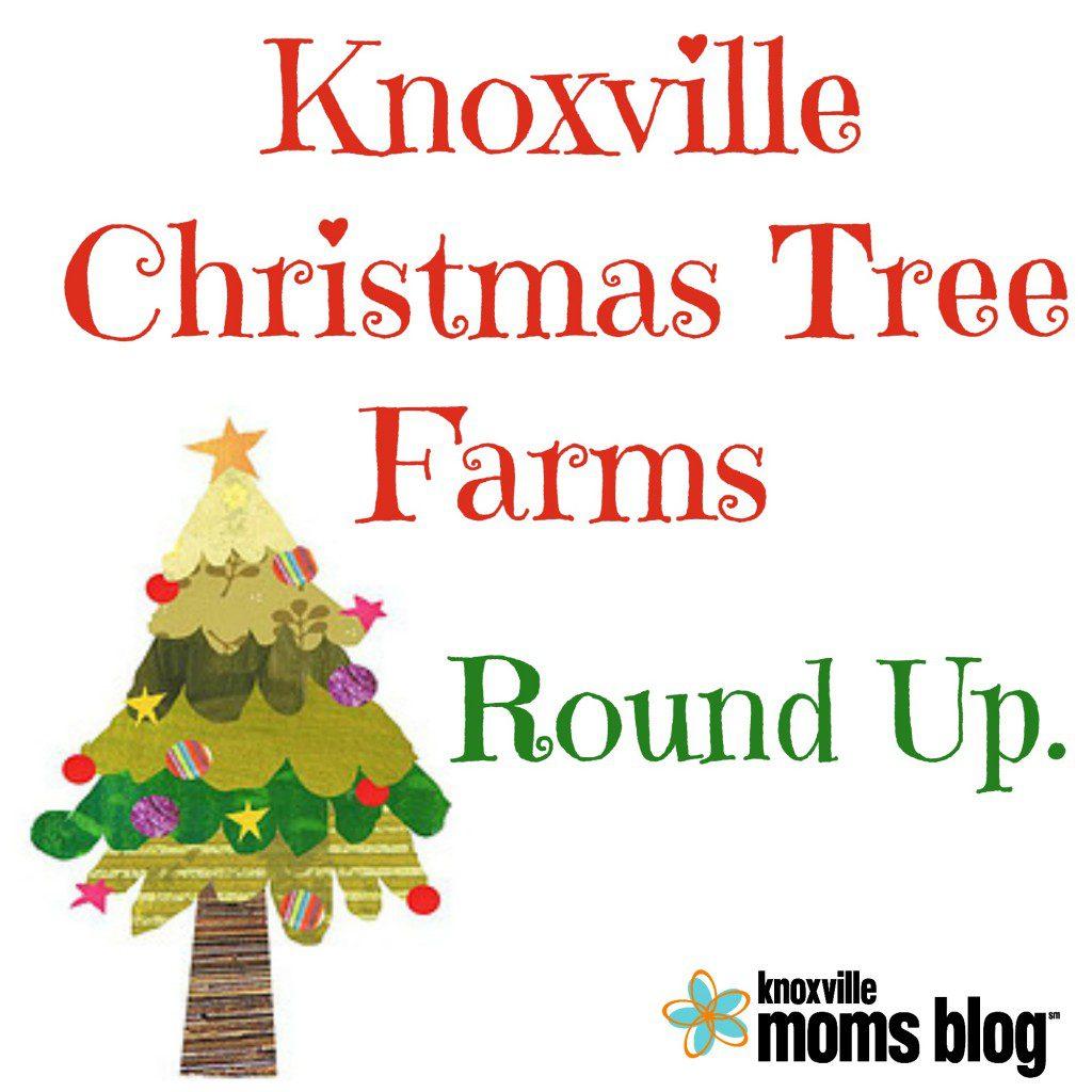 christmas tree farms round up - Bluebird Christmas Tree Farm