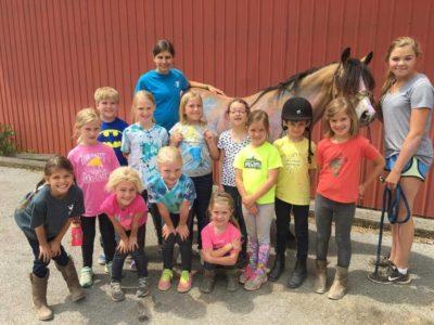 Topline Equestrian