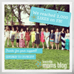 Celebration of Knoxville Moms Blog's Six Month Anniversary! {Giveaway}