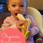 Organic Bananas and Succumbing to Mom Pressure