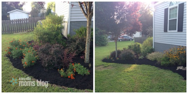 landscaping review 2