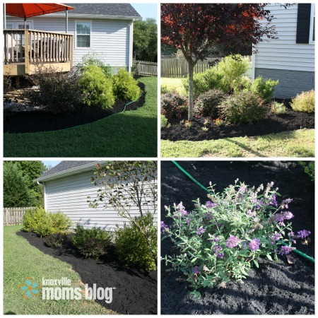 landscaping review