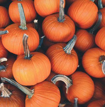 Pumpkin Pinspiration