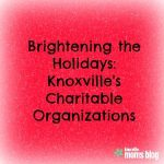 Brightening the Holidays: Knoxville's Charitable Organizations {2015}