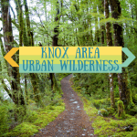 Knox Area Urban Wilderness