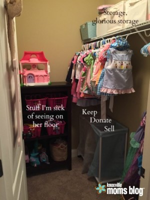 Full Closet View