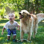 Growing up with Fido: How to Keep Kids and Pets Safe Together
