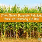 Knoxville Corn Mazes, Pumpkin Patches, Trick-or-Treating, Oh My! {2015}