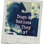Dogs & Babies: Do They Mix?