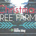 3rd Annual Knoxville Christmas Tree Farm Round-Up