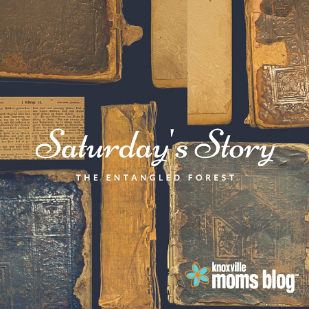 Saturday's Story 450