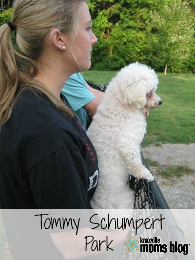 TommySchumpertB