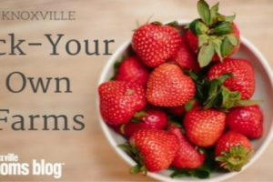Pick-Your-Own-farms