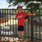 The Fresh Scrape
