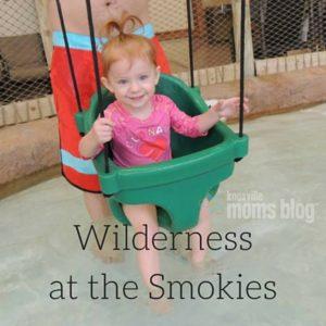 Wildernessatthesmokies