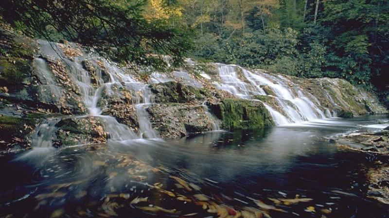 Coker Creek Falls look like a sweet spot to find solace. the area is known for its East Tennessee history.