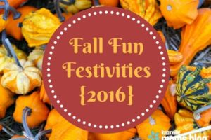 Knoxville Fall Festivities