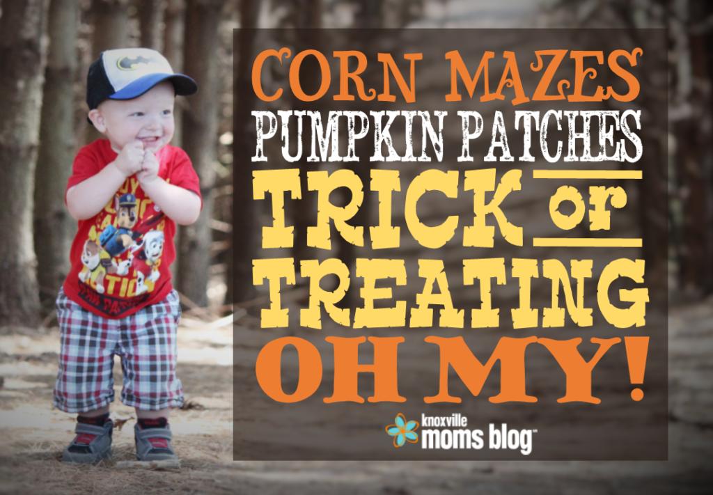 pumpkin patches hayrides corn mazes halloween trick treat events