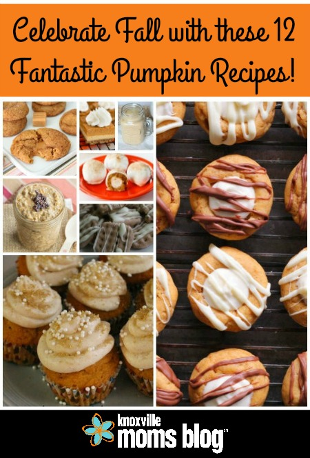 Celebrate Fall with these 12 Fantastic Pumpkin Recipes on Knoxville Moms Blog