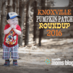 Corn Mazes, Pumpkin Patches, Trick or Treating, Oh My! {2016}