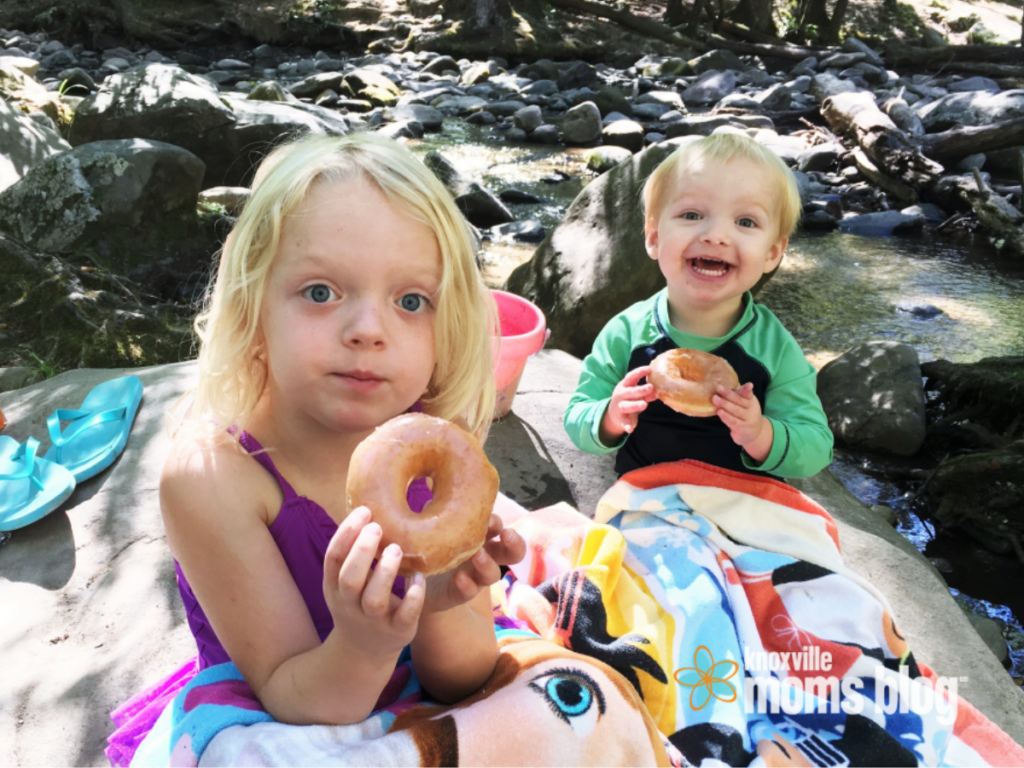 Donuts in Cades Cove | Knoxville Mom's Blog