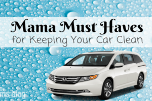 Mama Must Haves for Keeping Your Car Clean