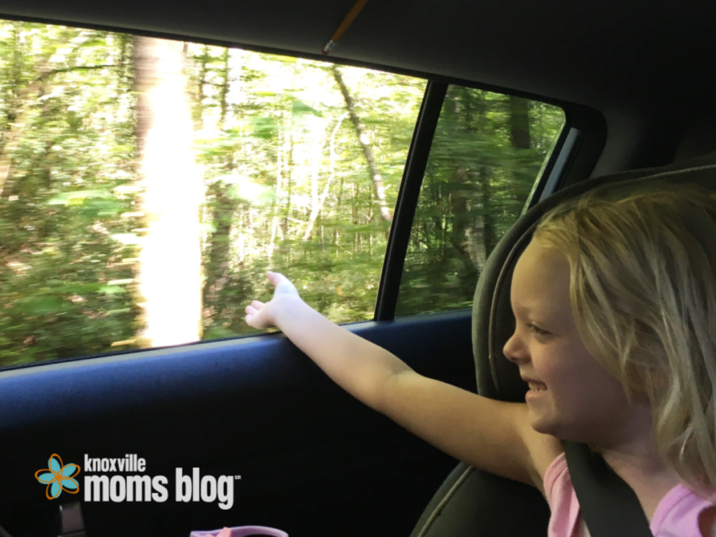 Hand out the Window on the way to Cades Cove | Knoxville Mom's Blog