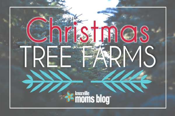 Knoxville Christmas Tree Farms