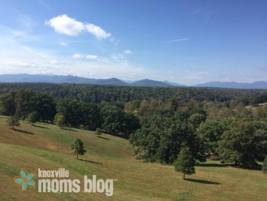 View from Biltmore