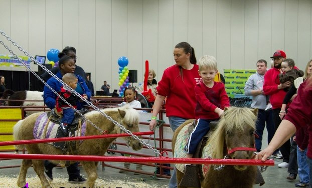 Knoxville Kids Fair