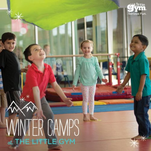 The Little Gym Winter Camps