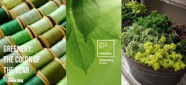 Incorporating the Pantone® Color of the Year into your Home