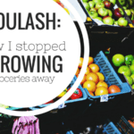Goulash: How I Stopped Throwing Groceries Away