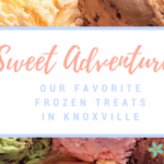 Sweet Adventures: Our Favorite Frozen Treats in Knoxville