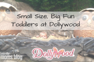 Small Size, Big Fun Toddlers at Dollywood