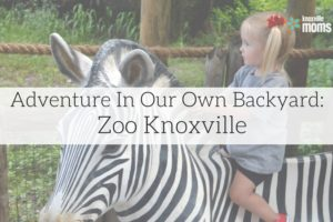 Adventure- Zoo Knoxville