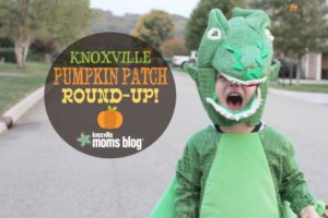 Knoxville Pumpkin Patches