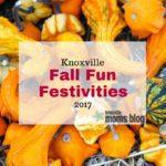 Fall Fun Festivities {2017}