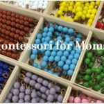 Montessori Programs: How they Differ from Traditional Programs