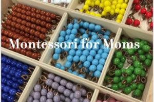 Montessori For Moms