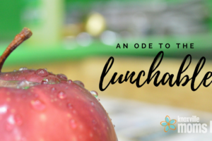 An Ode to the Lunchable