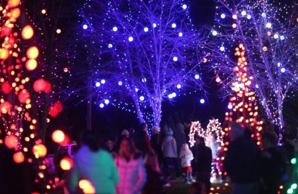 Light the Park in Farragut