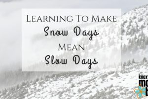 snow day slow day lhb