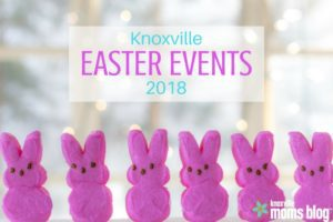 Knoxville Moms Blog (1)