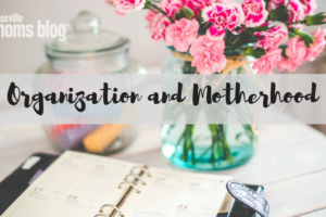 Organization and Motherhood