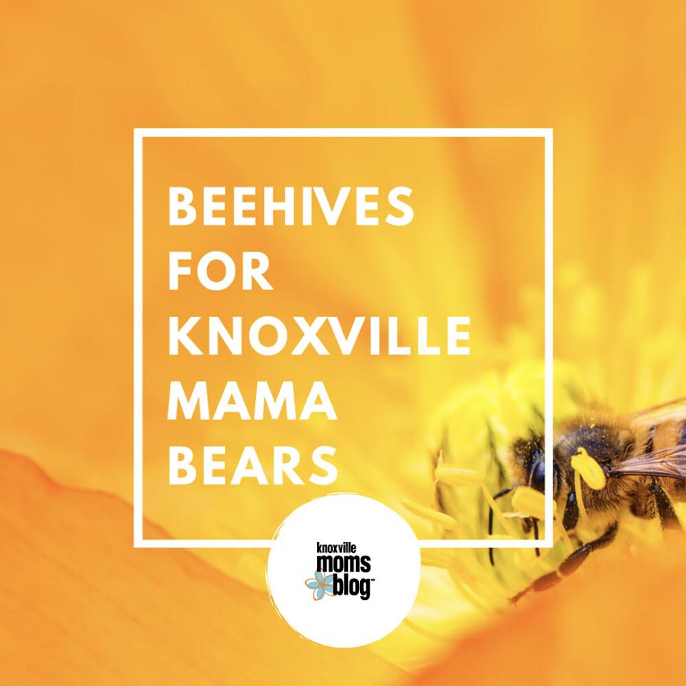 Beehives for Knoxville Mama Bears