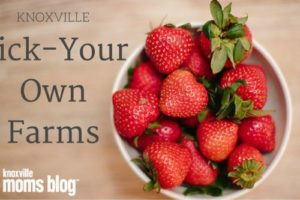 Pick-Your-Own-farms-e1461583187808