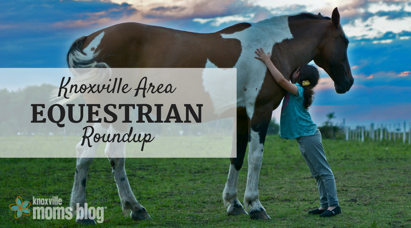 Knoxville Area Equestrian Roundup